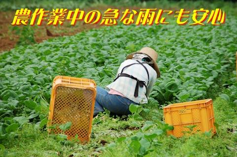 補聴器 農作業 おすすめ