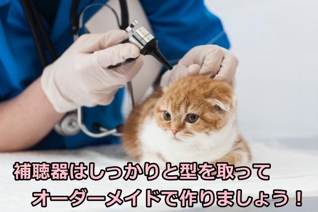 補聴器 宇都宮 オーダーメイド 耳型
